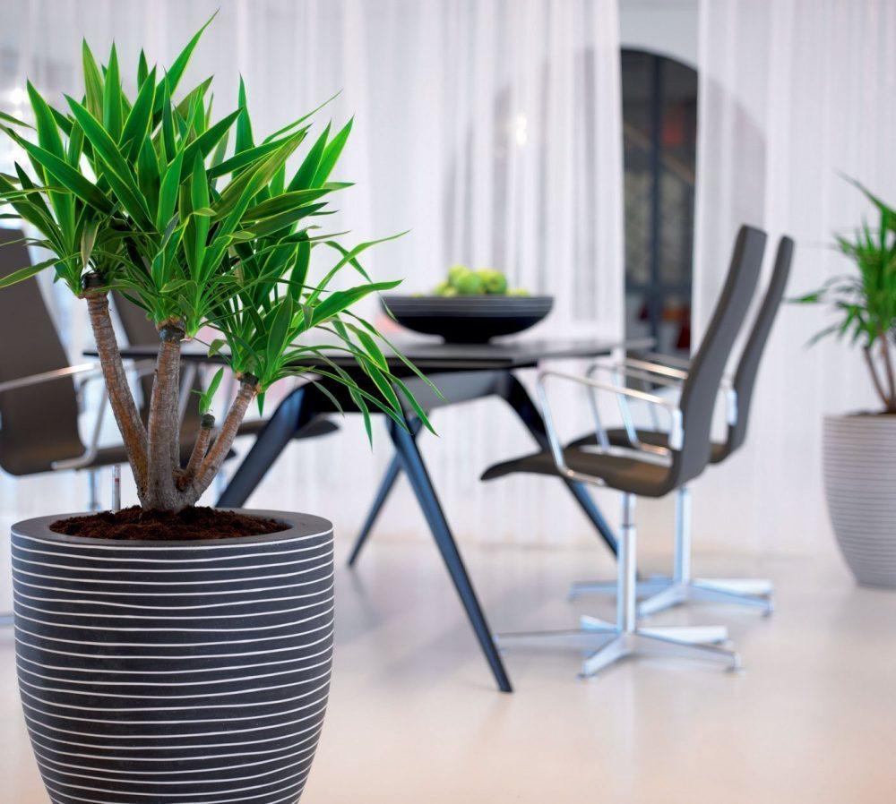 Arredamento per ufficio verde da interno for Stanza uso ufficio