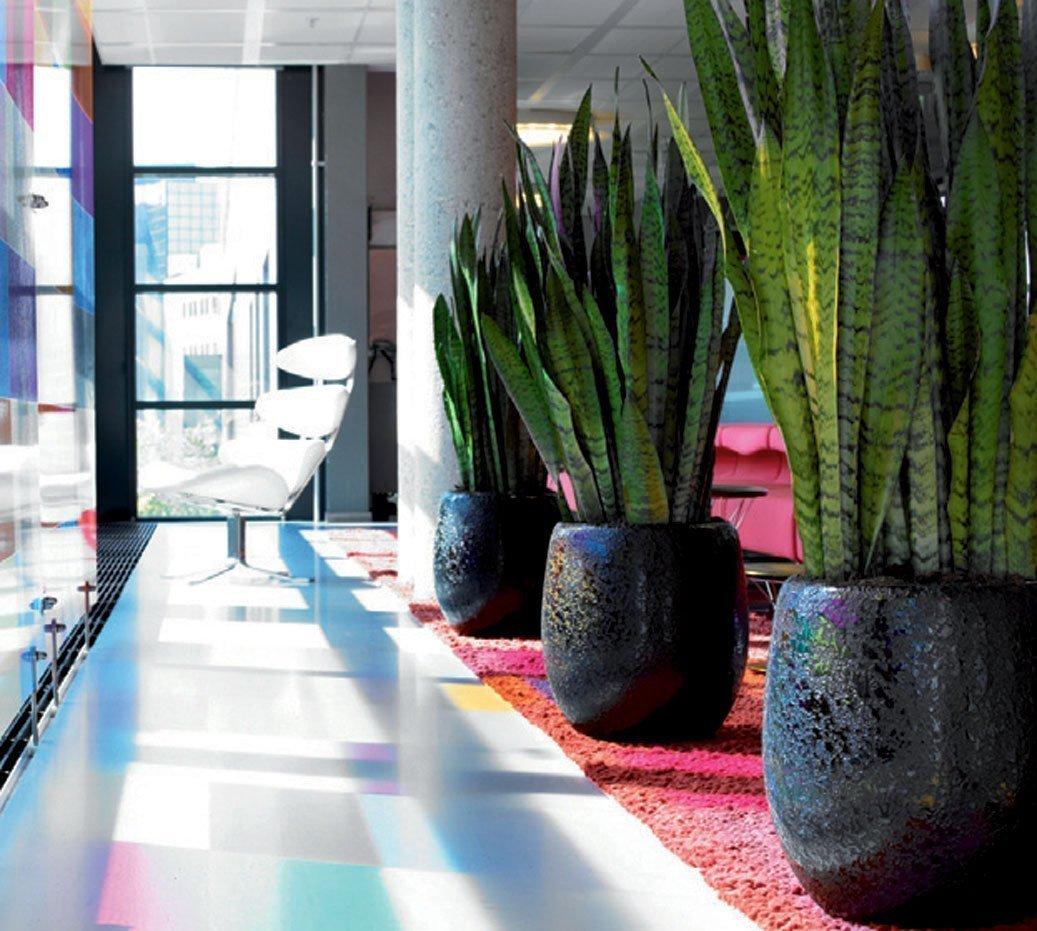 Piante arredo interno fiore artificiale verde piante di for Piante verdi da interno
